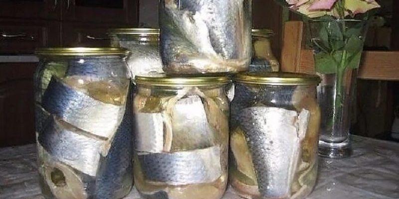 банки с рыбой маринованная рыба