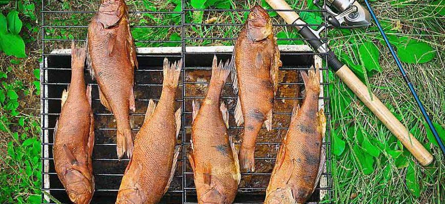 koptim-rybu