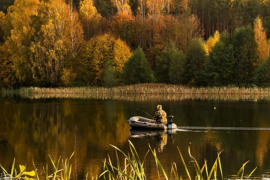 осень рыбалка